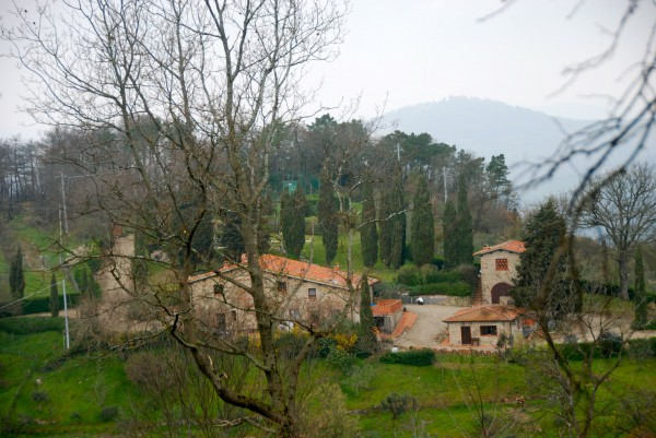 """this is Il Colle, where i plan to host  the first Pronto Marcella Event in Oct / Nov 2014 : """" all about the olive tree"""""""