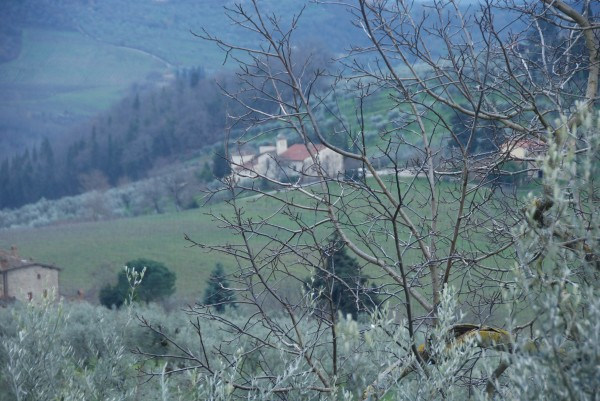 view  of San Martino from  Cristina's house