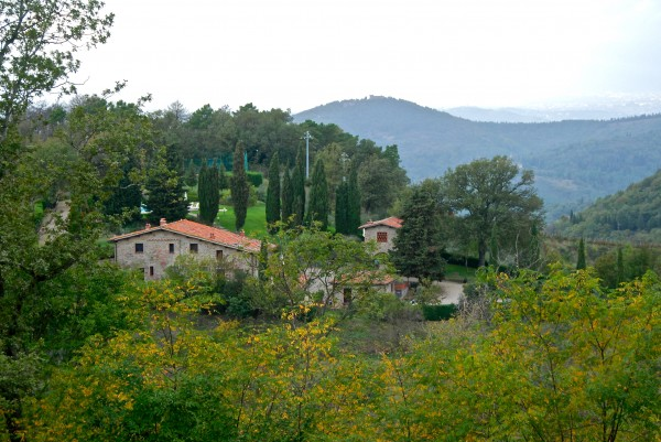 Our home in Tuscany, Il Colle